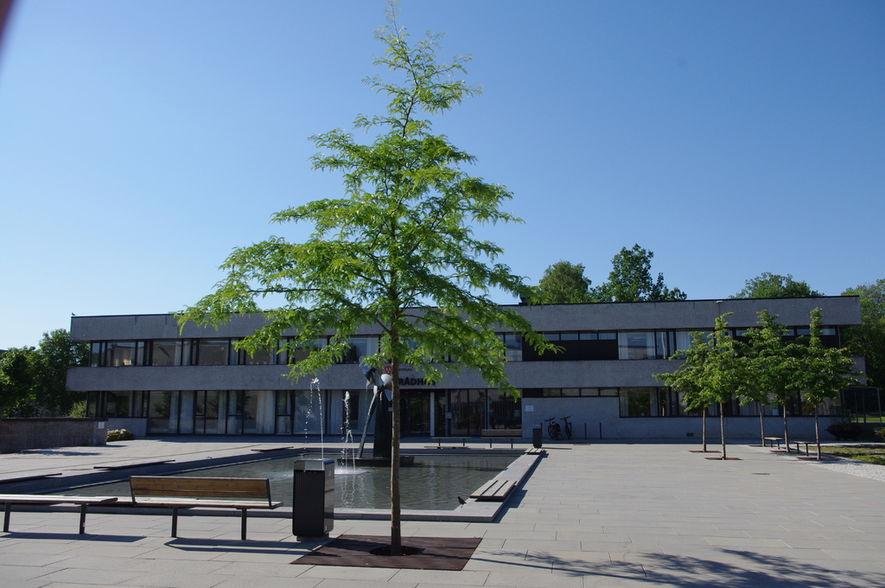 2018-07-11 Trær i borggården