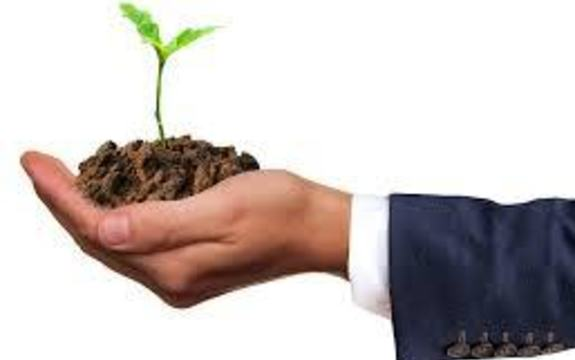 en plantespire som holdes i en hånd