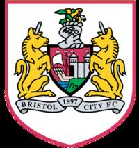 Badge Bristol city