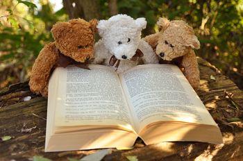 teddy-bear-2855982_960_720