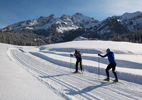 Espace Nordique Alpes Vaudoises