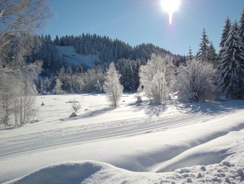 Gerardmer Ski Nordique Bas Rupts