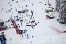 Ski Freestyle hommes