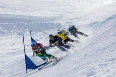 Ski Cross Hommes