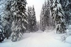 Mouthe Ski de Fond