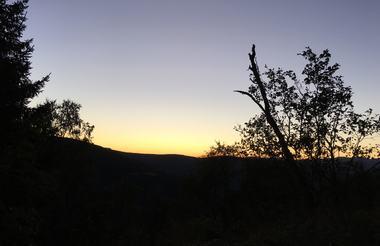Gronsberg