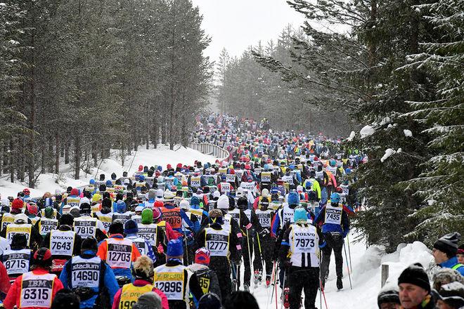 ÅK KOLLEKTIVT är uppmaningen från arrangören till alla deltagarna i Vasaloppets tävlingar. Foto: VASALOPPET