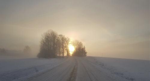 Vintersol Foto: Kirsti M Andreassen