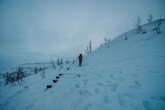 Foto illustrasjon vinter og natur