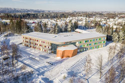 Hele skolen vinter