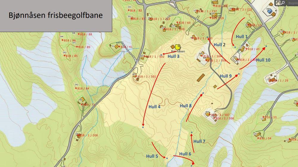 Frisbeebane_kart