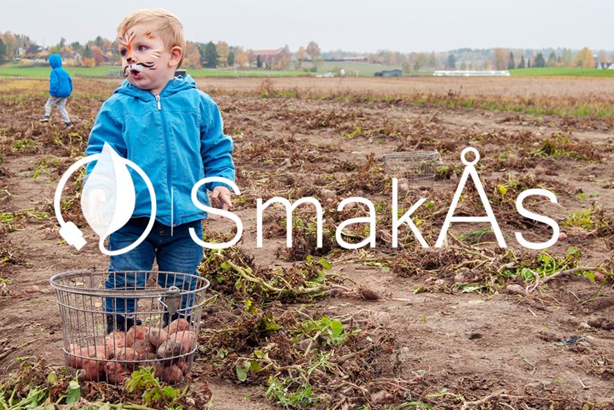 SmakÅs2018_Foto-Ellen M