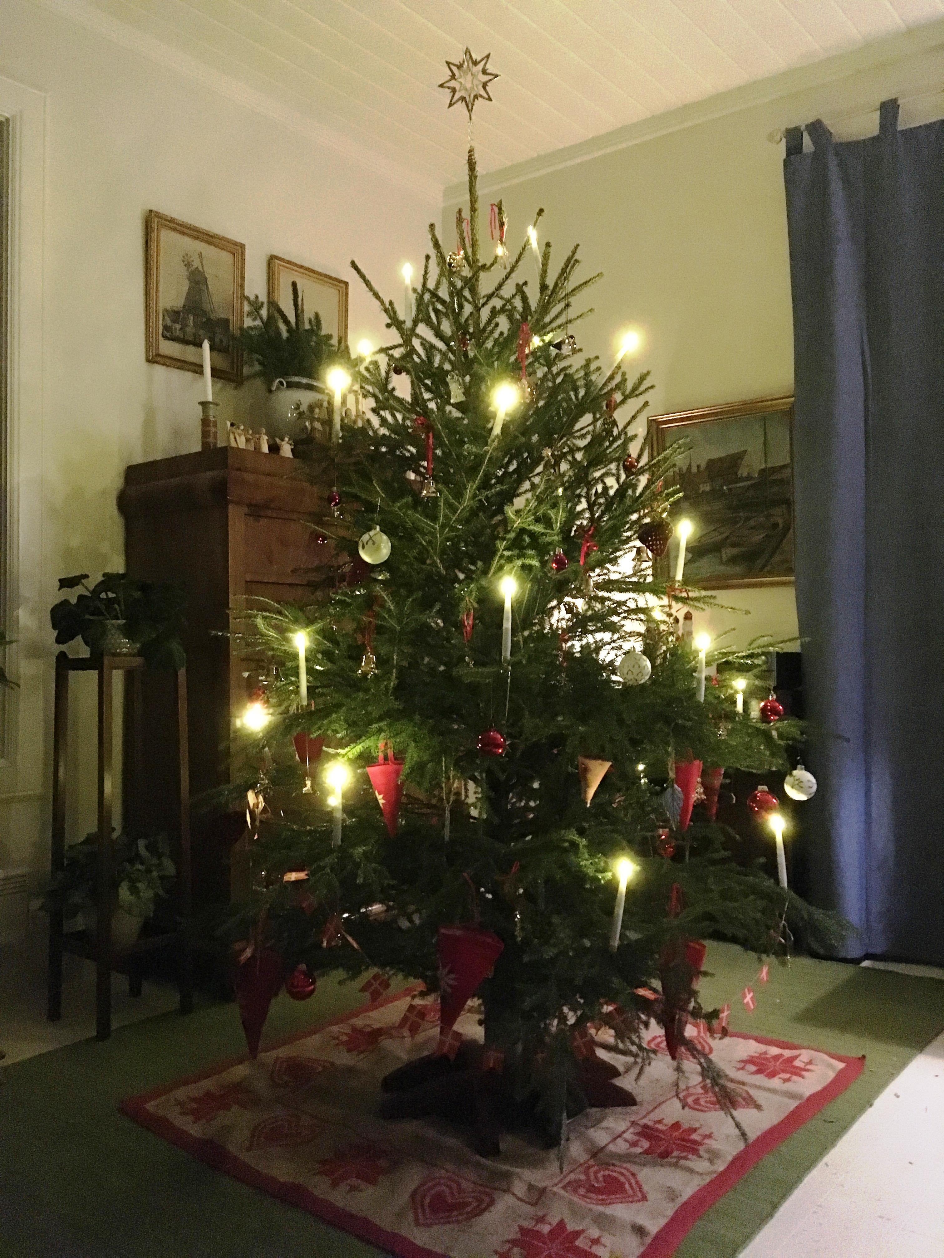 Julaften i prestegården 2019_juletre