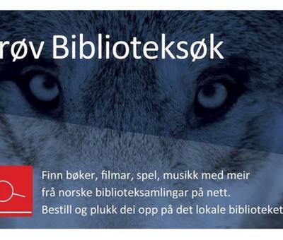Bibsøk