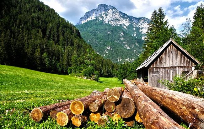 Landskap med hytte og tømmer