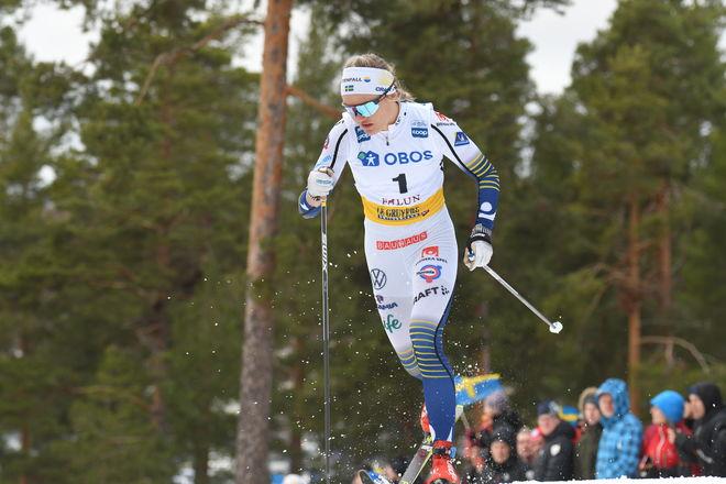 LINN SVAHN vann sin tredje världscupsprint i Falun i helgen. Nu debutererar 20-åringen från Östersund i en tour som dessutom startar på hemmaplan. Foto/rights: ROLF ZETTERBERG/kekstock.com