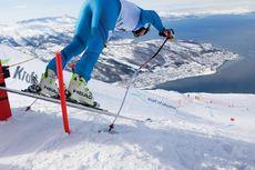 Narvik 2020