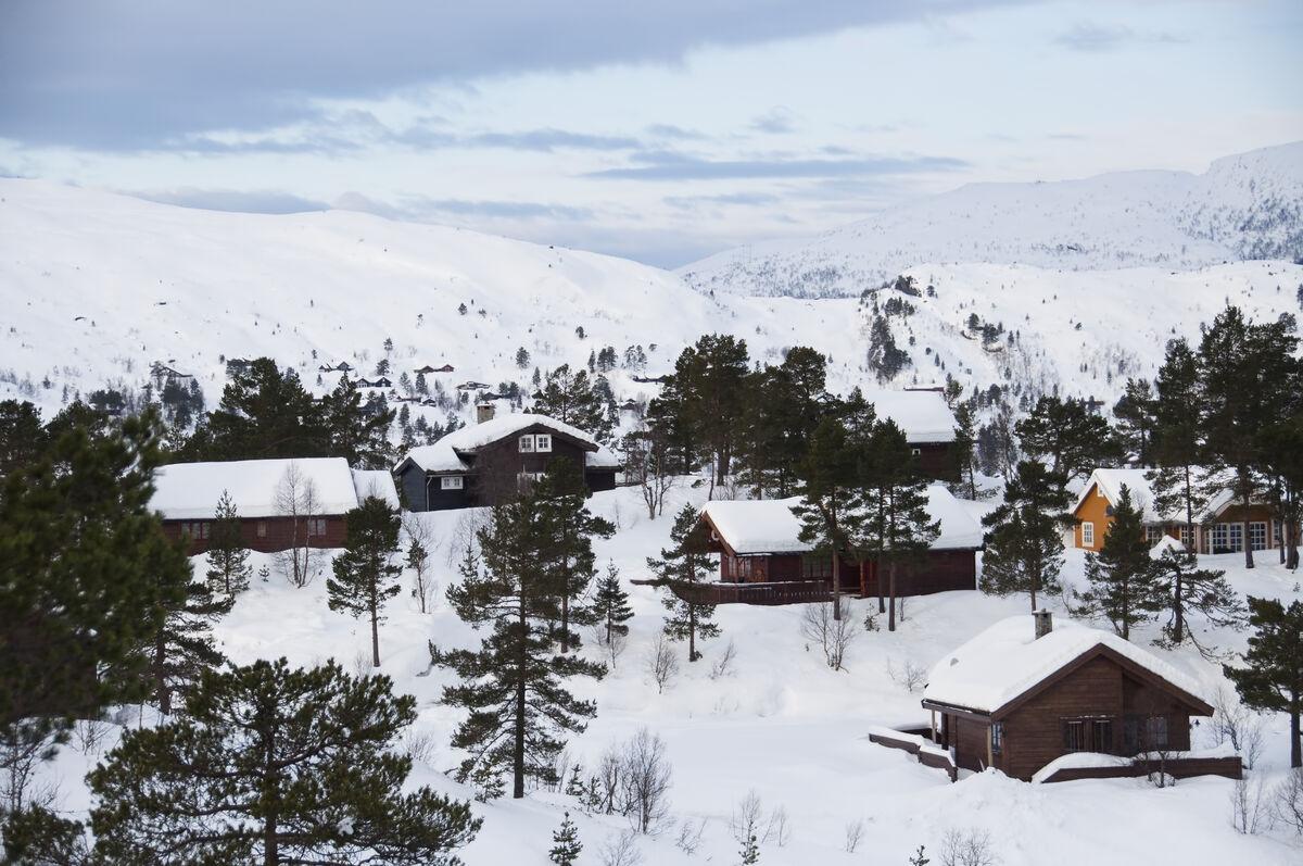 Cabin village in winter