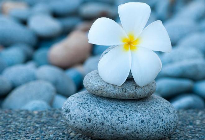 Psykisk helse blomst