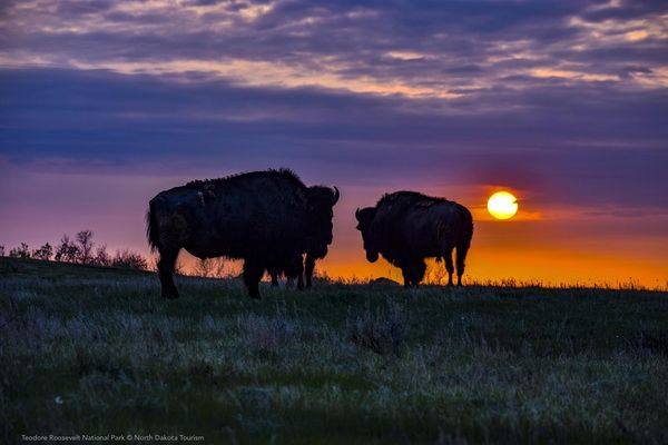 Credit North Dakota Tourism