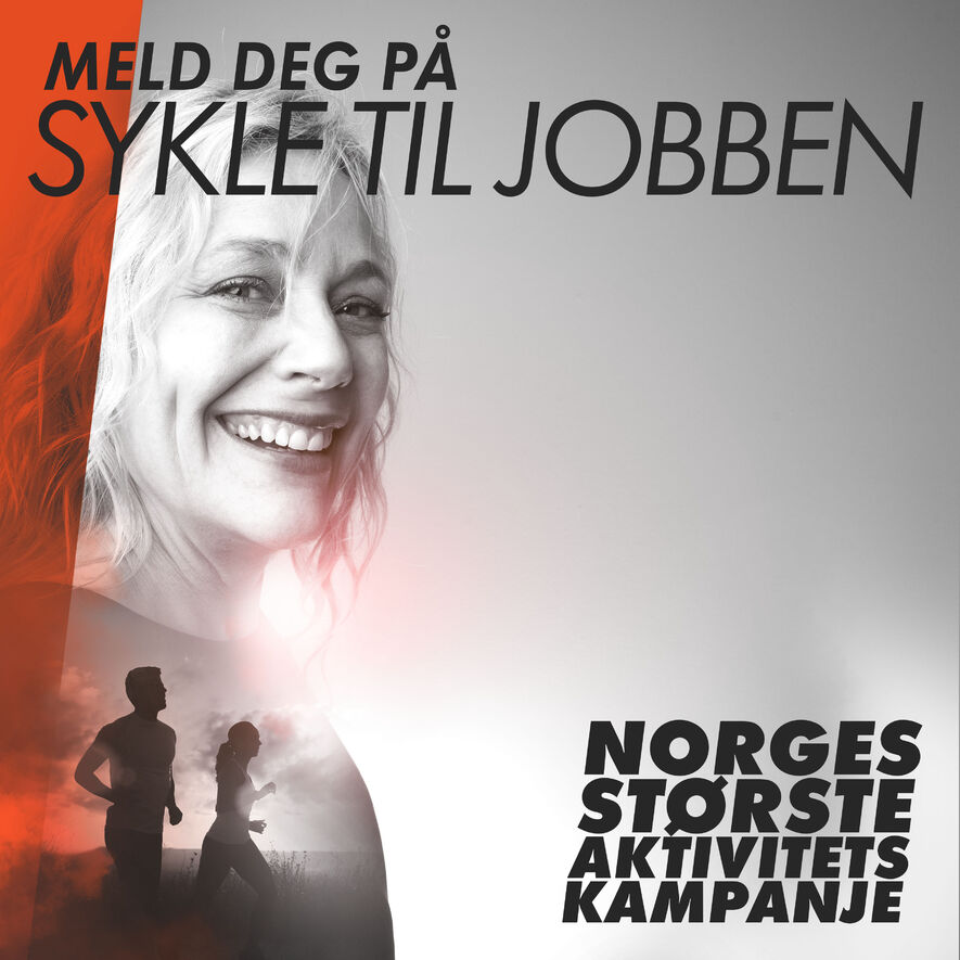 Ingress sykle til jopbben