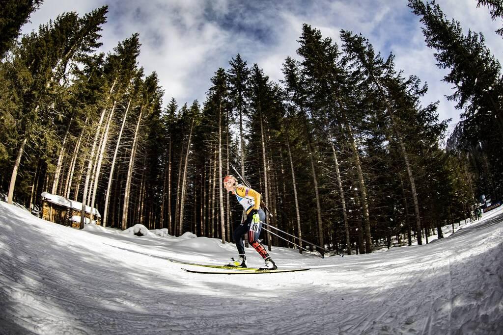 Biathlon   Le CD 39 cherche un entraineur (ski nordique.net)