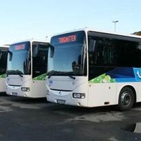 Torghatten busser