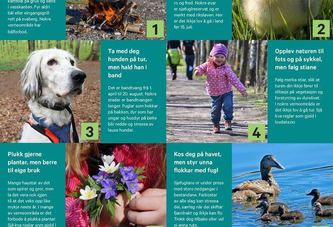 8-tips-for-naturvennleg-friluftsliv