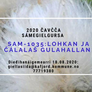SAM-1035 ny sam