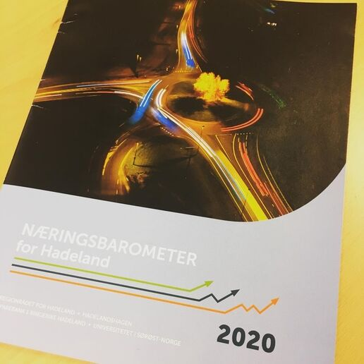 Rapport for 2020 næringsbarometer