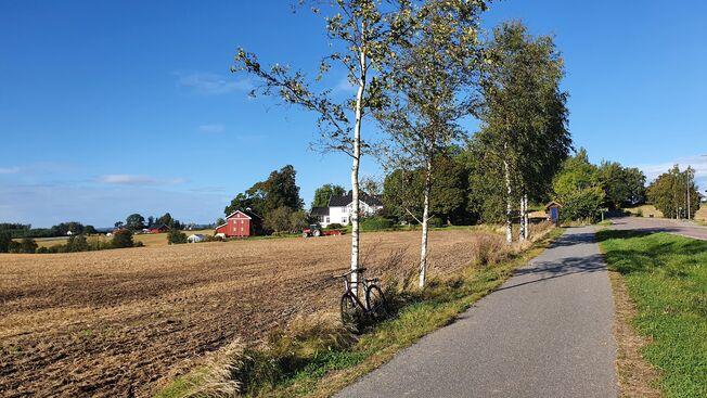 Fotografi tatt langs Drøbaksveien, sykkelvei som går langs jordene