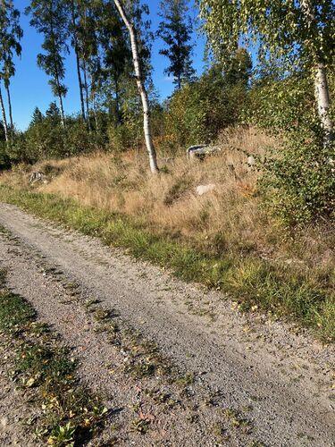 Langs turveien fra jernbanebrua ved Grønnslett til Ås kirke