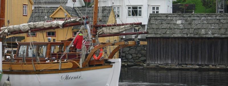 Kystdagane på Sunde sept 2011 (2)