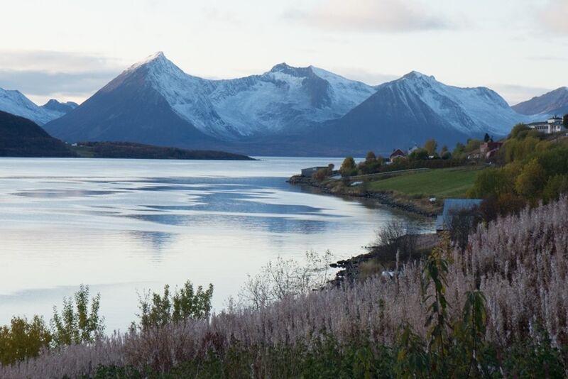 Utskikt mot godfjord- sommer
