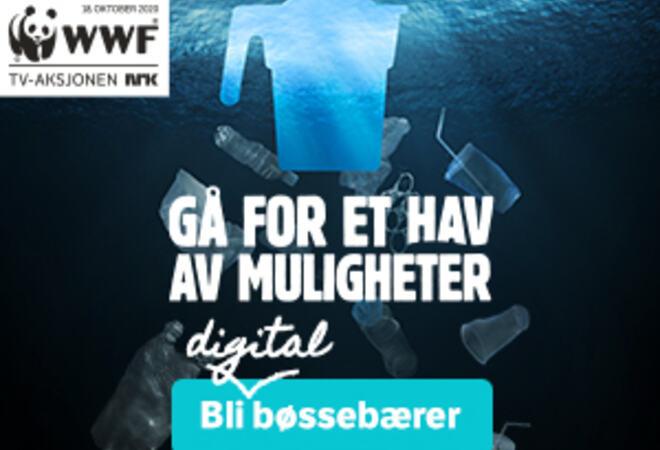 300x250-banner_digital-boessebaerer_key-visual