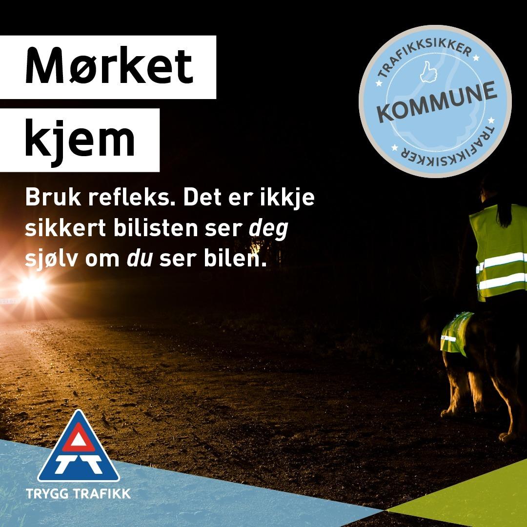 Kvadrat_TS_kommune_Oktober_NynorskMørket-kommer.jpg