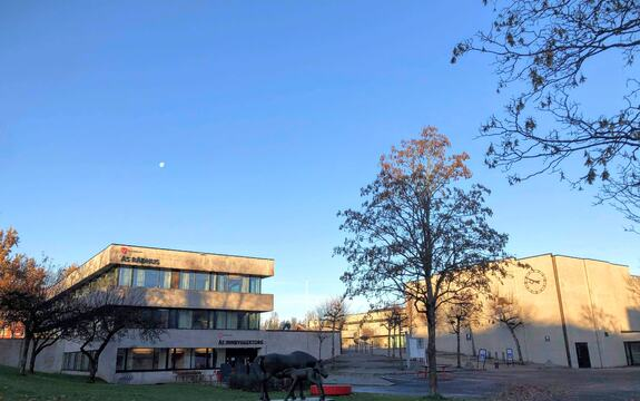 Kommunen har fått melding om flere nye smittetilfeller i Ås siste døgnet. Foto: Ås kommune/Hilde Fougner