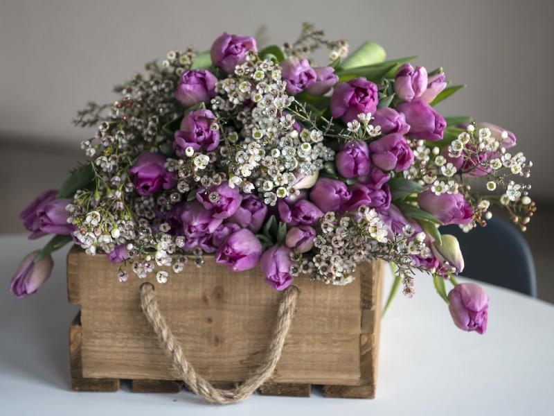 Lilla-tulipaner-og-voxblomster.jpg