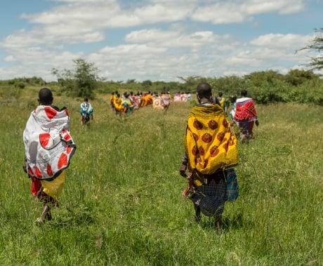 7-masai-roser-med-mening.jpg