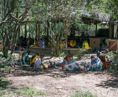 8-masai-roser-med-mening.jpg
