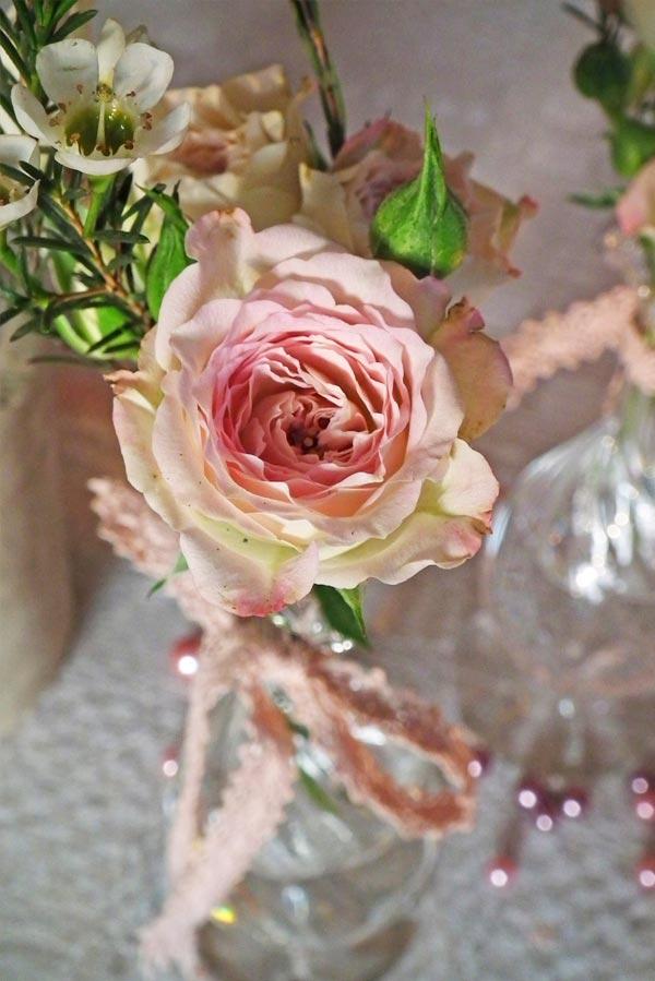 roser_2.jpg