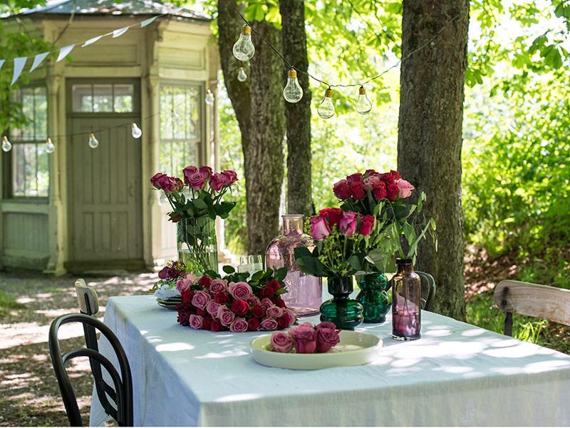 festroser-borddekning-rosegaranti-1.jpg