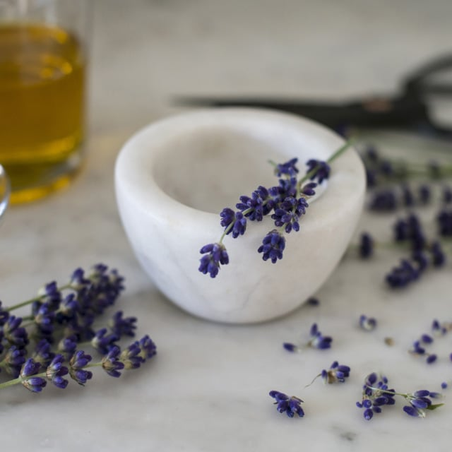floriss-lavendel-morte.jpg