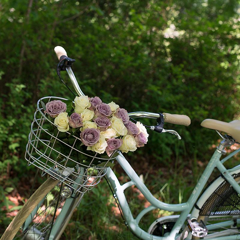 festroser-sykkel.jpg