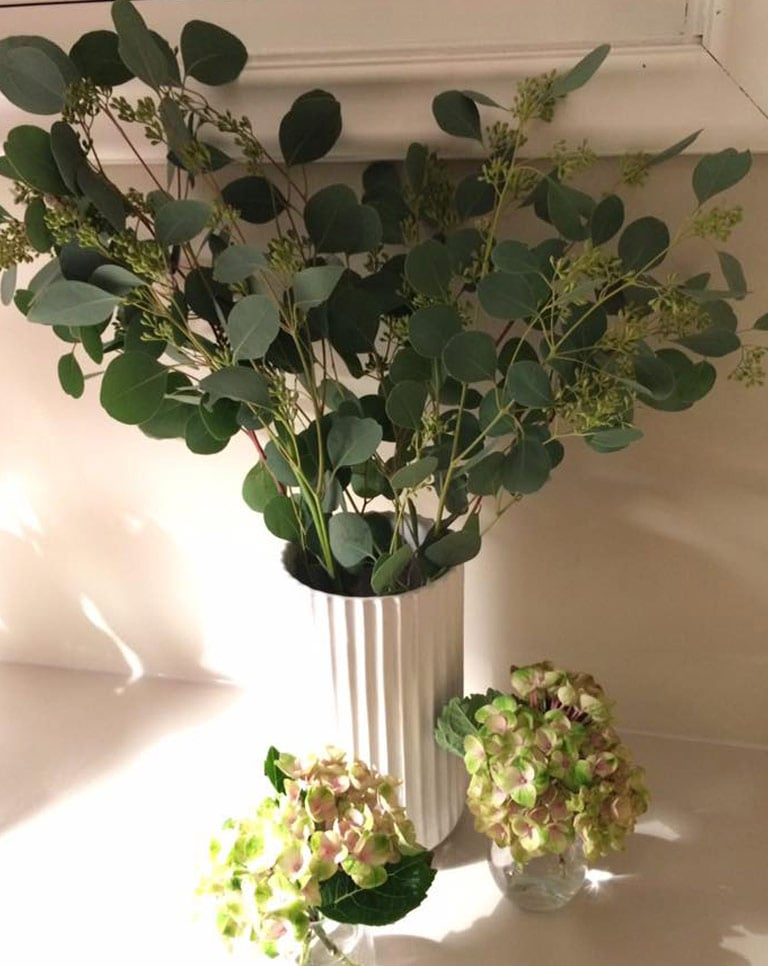 floriss-eucalyptus-hortensia-2.jpg