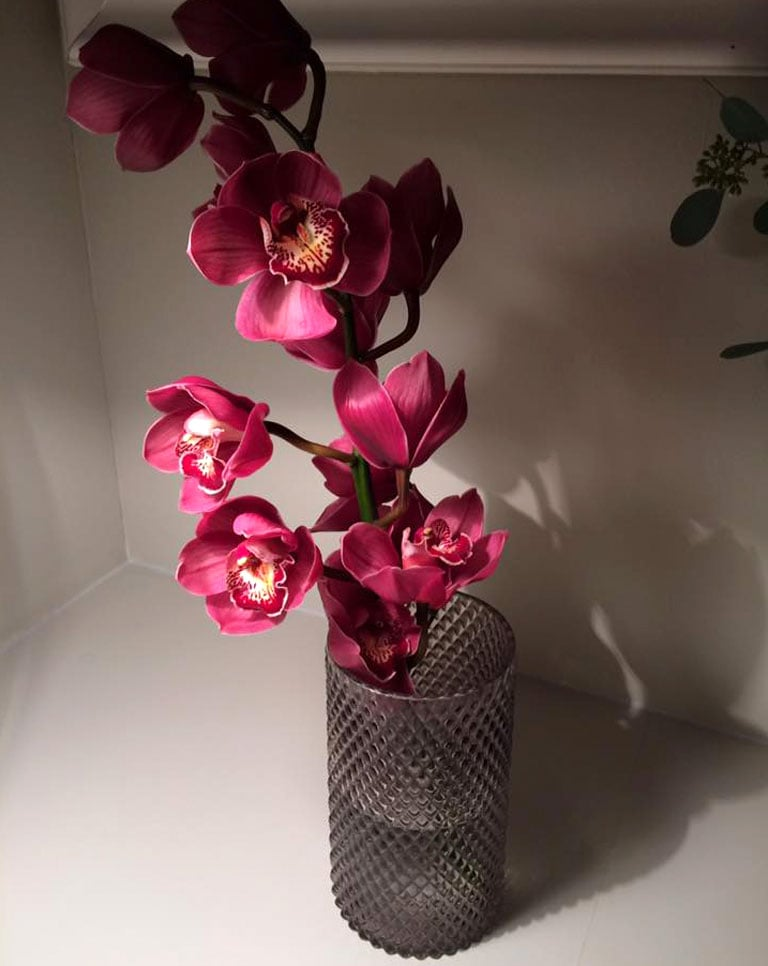 floriss-orkide-cymbidium-2.jpg
