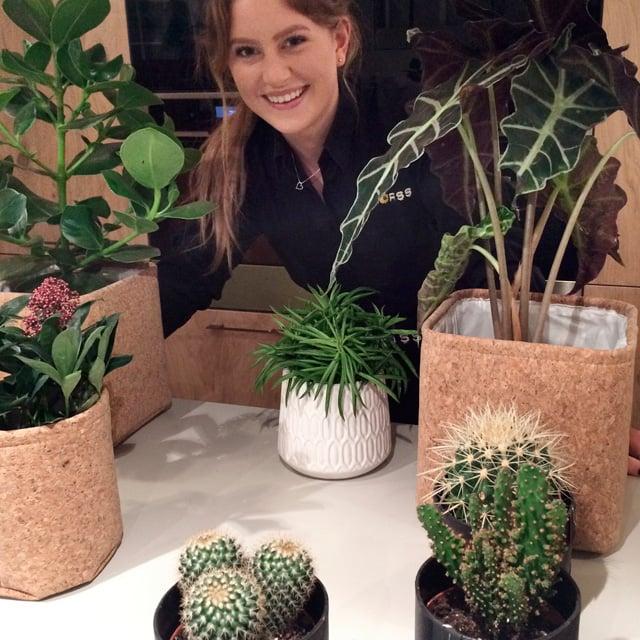 floriss-trendy-gronne-planter-2.jpg