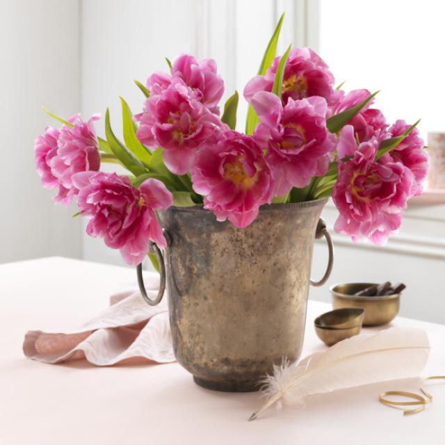 rosa-interiortulipaner-i-vase.jpg