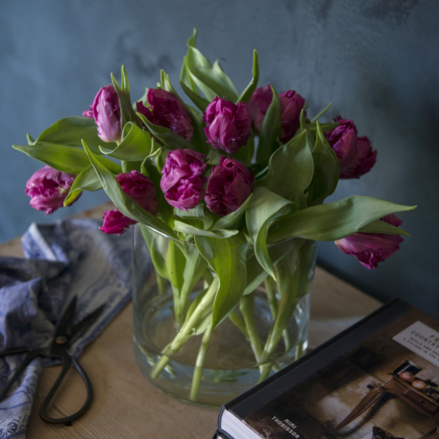 lilla-tulipaner-i-vase.jpg