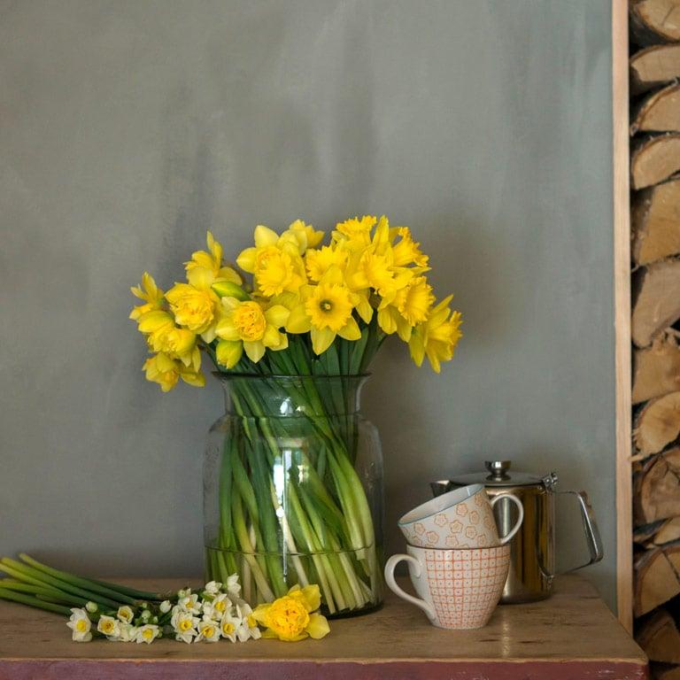 floriss-paaske-blomster-paaskeliljer-narciss.jpg